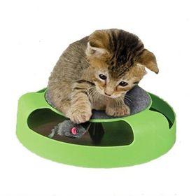 Παιχνίδι Κίνησης για Γάτες (Φροντίδα κατοικιδίου)
