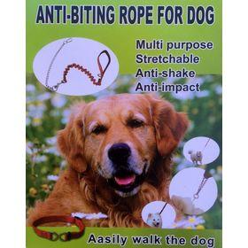 Λουρί Σκύλου που Προστατεύει από Δαγκώματα (Φροντίδα κατοικιδίου)